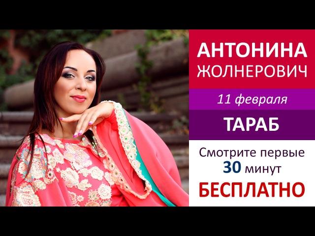 БЕСПЛАТНО – первые 30 минут Тараб / Антонина Жолнерович