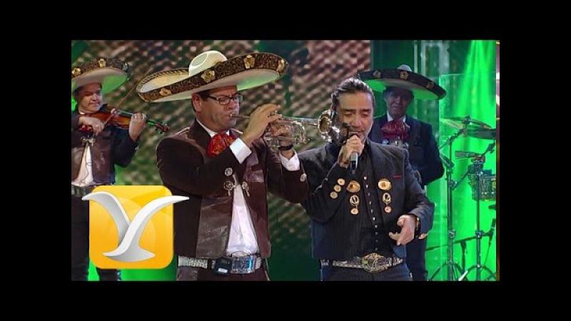 Alejandro Fernández Acá Entre Nos Festival de Viña del Mar 2015 HD 1080p