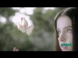 Vangelis  Vanessa Mae - Roxannes Veil