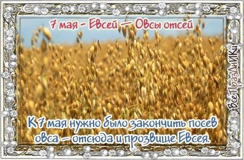 https://pp.userapi.com/c639919/v639919719/1d69e/B3AcGbf6O7E.jpg