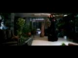 бьянка, макс лоренс - лебединая  бой с тенью