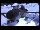 J G Put Down The Guns HD Official Video