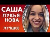 ВСЕ ЛУЧШИЕ ВАЙНЫ АЛЕКСАНДРА ЛУКЬЯНОВА  ПОДБОРКА ВАЙНОВ 2017 - ЛУЧШИЕ ВАЙНЕРЫ