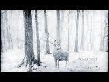 AGALLOCH The mantle (full album)