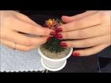 Кактус из бисера. Часть 22. Beaded cactus with real thorns. Мастер-класс.