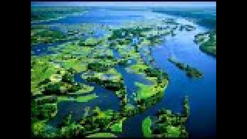 Дикая природа Миссисипи. Дельта реки.