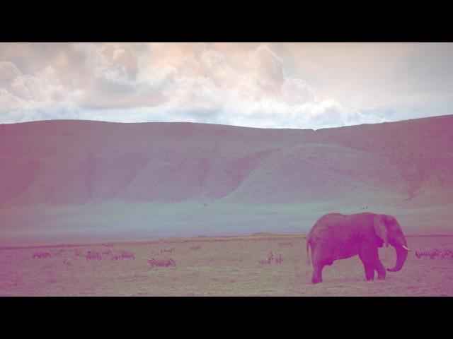 Jacob Henry Coastal - Serengeti [Silk Music]