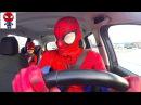 Человек-Паук едет на машине | ЭКСТРЕМАЛЬНЫЕ ГОНКИ НА СУПЕР БЫСТРЫХ МАШИНАХ | TimKo Kid