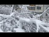 В Молдове Не помнят такого снегопада! Мощный снег 21 Апреля 2017 год Кишинев Погода