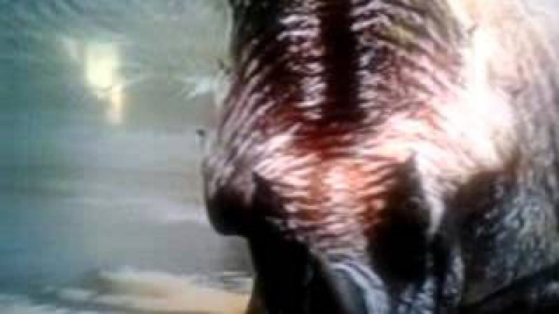 Luta Jurassica - O Rio da Morte Part 1 H2 Dublado