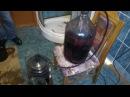 Домашнее вино. Снятие с осадка и ответы на вопросы. Мошки