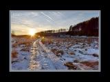Белым снегом...Фотограф Николай Семиков