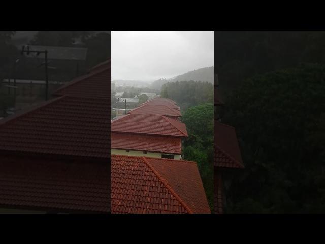 Первый день. Вид с балкона. Тропический ливень. Справа на холме - статуя Будды