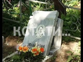 Вандалы с кувалдами разгромили кладбище в Лыскове