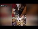 Эксклюзивные кадры из комнаты краснодарских каннибалов