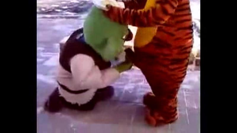 Тигра имеет Шрека