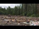 Свалка мусора у Маш.завода | Людиново