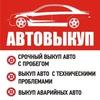 АВТОВЫКУП | Проверка Автомобиля | Гос Номер ViN