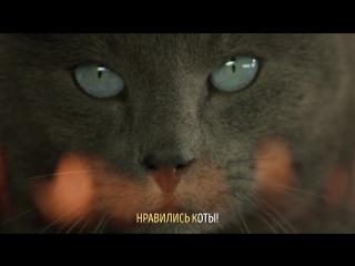 Музыка из рекламы SHEBA. Караоке кот – Пять причин (Россия) (2017)
