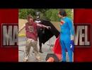 Бэтмен и Супермен против Бомжелорда