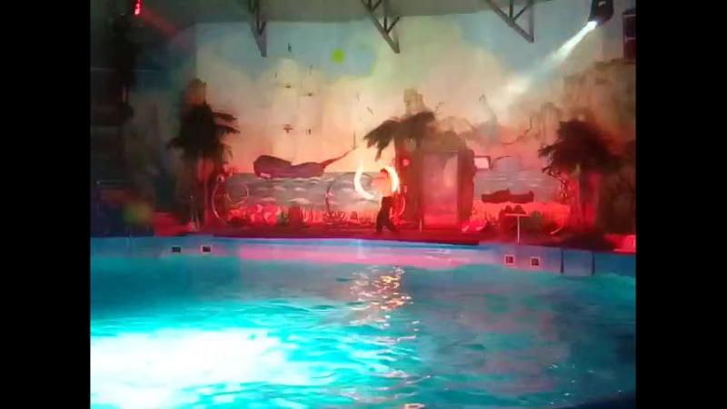 Фаер шоу 1 часть Ночное романтическое шоу в Дельфинарии Немо
