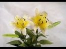 ABC TV How To Make Yellow Lily Paper Flower From Crepe Paper Craft Tutorial