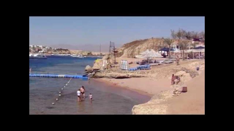 ГРАНД ОАЗИС в ШАРМ-ЭЛЬ-ШЕЙХЕ (пляж, остров Тиран, анимация)