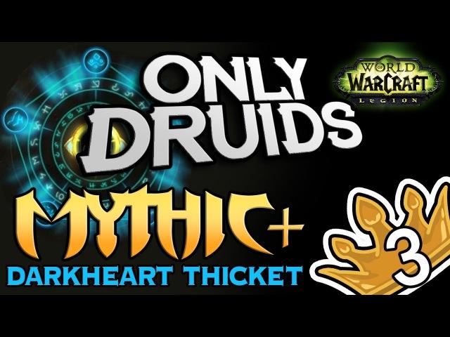 Only Druid Mythic Darkheart Thicket Keystone Level 3 Stealthrun