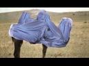 IS führt Burkapflicht für weibliche Tiere ein Postillon24