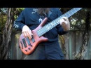Jeff Hughell Bass play through Trinidad Scorpion Hallucinations