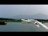 Перелетные птицы.Рома Жуков (1)