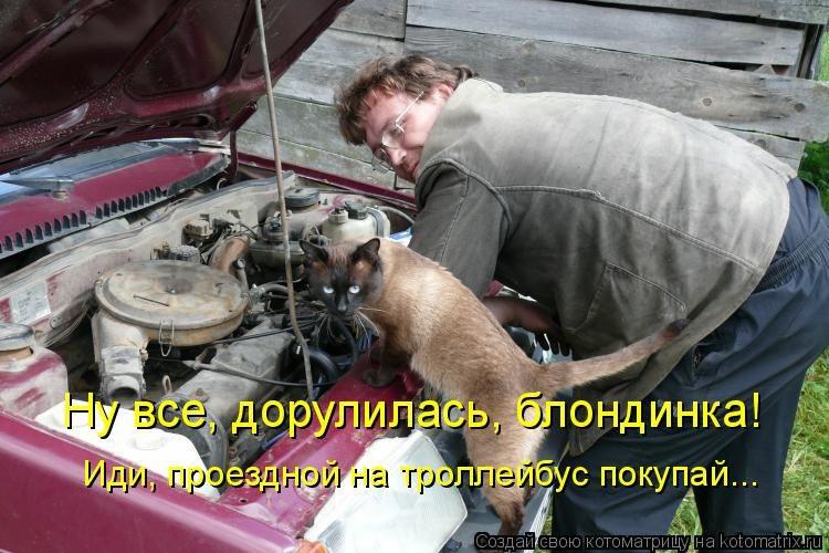 https://pp.userapi.com/c639921/v639921264/3ac40/TaMD06KAVrs.jpg