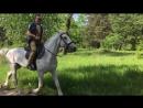 Катание на коне в Гидропарке