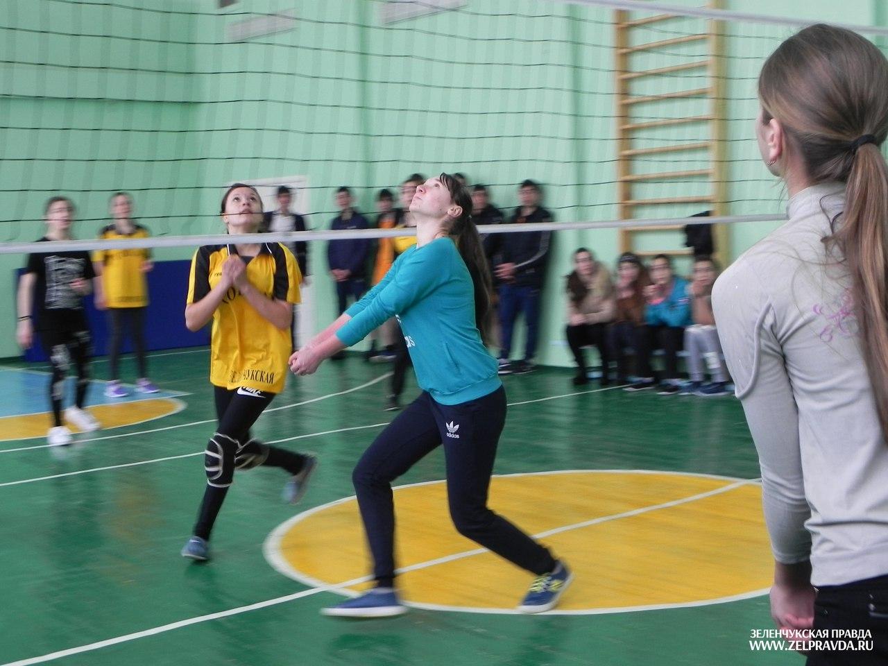 В Зеленчукской прошли районные соревнования по волейболу