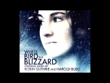 Harold Budd &amp Robin Guthrie - White Bird in a Blizzard OST (2014) (Full Album) HQ