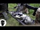 5 ИНОПЛАНЕТНЫХ ВТОРЖЕНИЙ СНЯТЫХ НА КАМЕРУ [Черный кот]