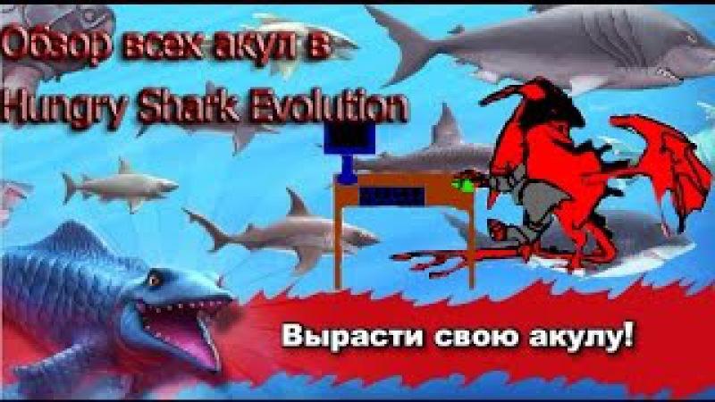 Hungry Shark: Evolution - Обзор всех акул