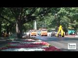 Лавочки за 20 тысяч, или Как продвигается реконструкция сада Шевченко