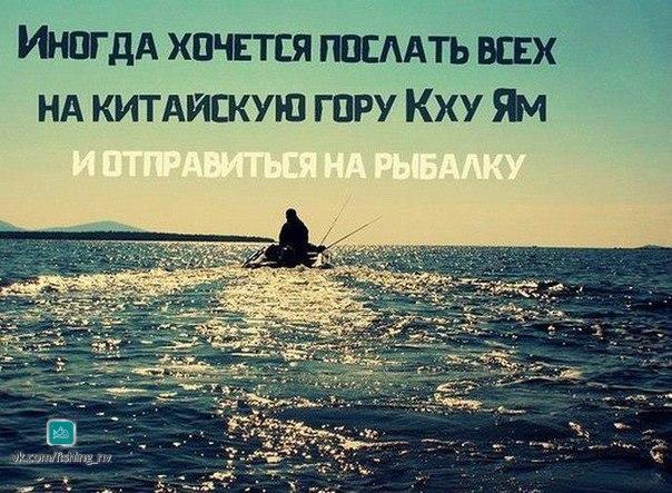 Фото №456240794 со страницы Дмитрия Ершова