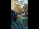 Валерия Тихонова - Live
