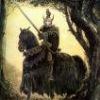 Odin Voin