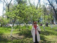 Светлана Коротышева, 10 декабря , Вологда, id70726175