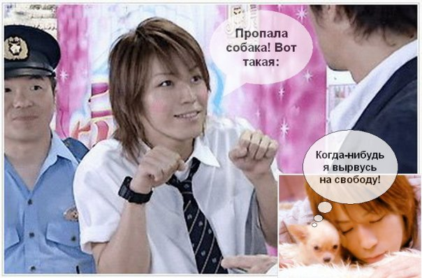 http://cs683.vkontakte.ru/u5032736/64585692/x_8b478130.jpg