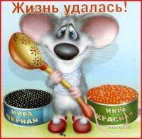 Лёша Костин, 27 февраля 1994, Сызрань, id41146889