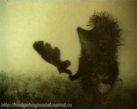 Ежик Тумане