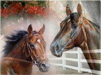Прикольные рисунки и картины / животные, рисунки, портреты, картины, кони.