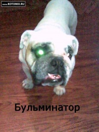 Артём )))), 5 января 1999, Казань, id122047893
