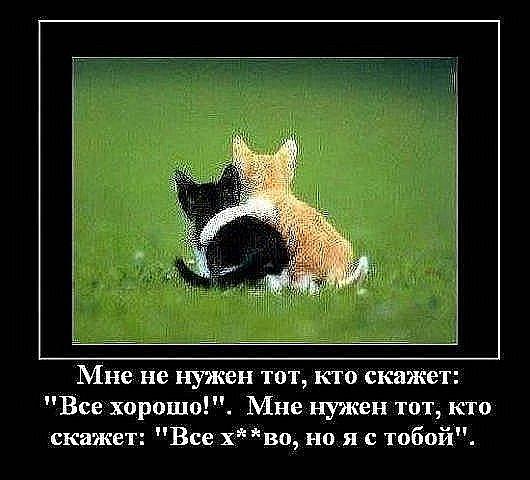 http://cs698.vkontakte.ru/u56810494/114473754/x_cd191e30.jpg