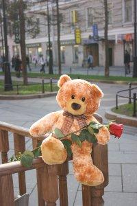 Наталья Анненкова, 29 марта , Санкт-Петербург, id33932012