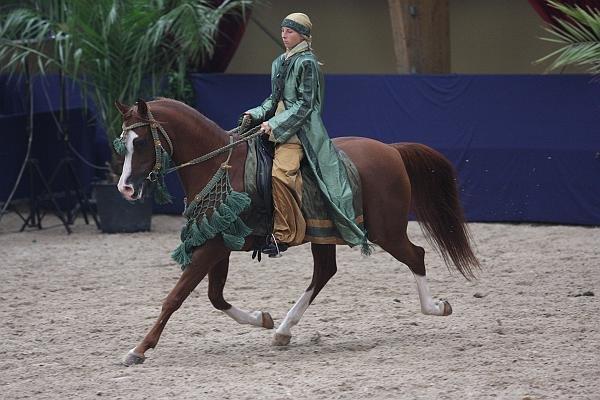 Кроме того, арабские лошади